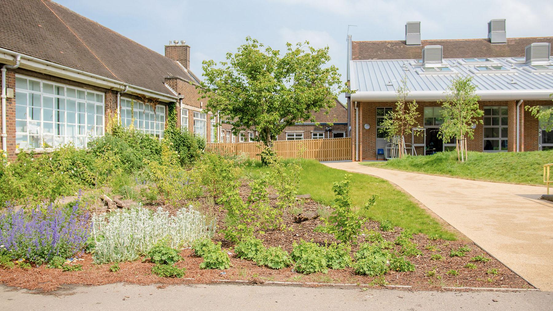 School building and nice outdoor garden